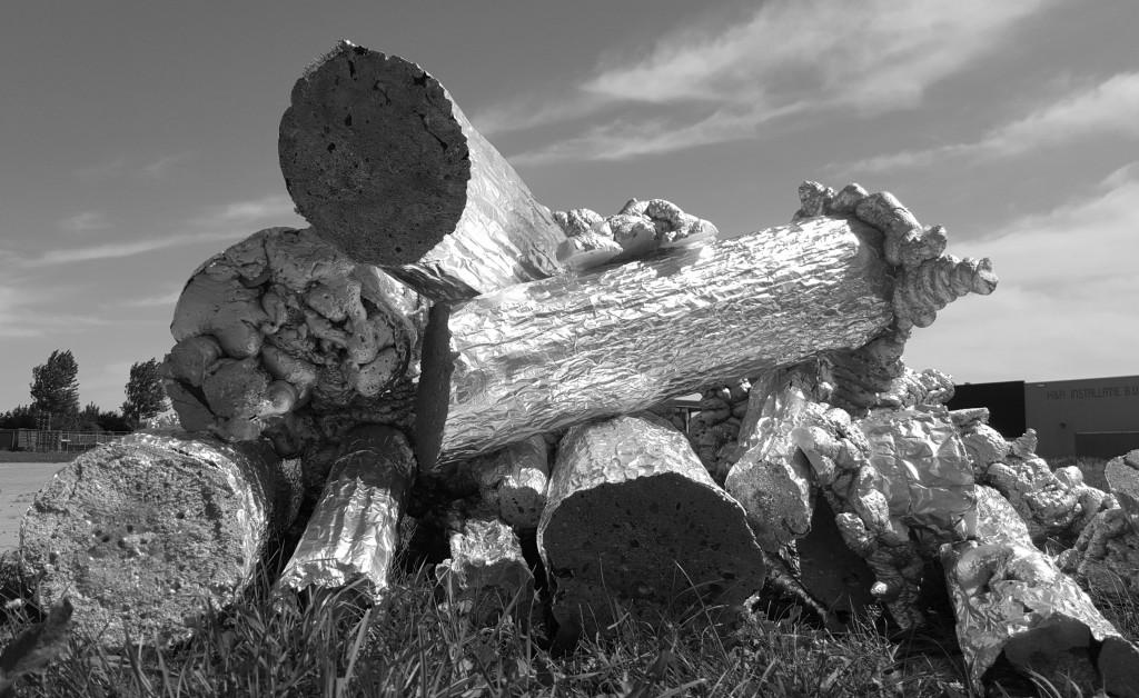felled forest bianca runge 2015